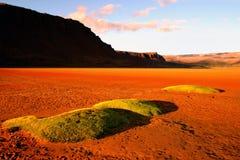 Wüstenstrand Stockfoto