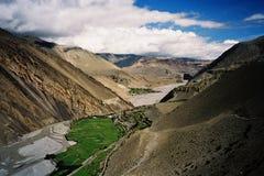 Wüstental mit blühenden Landschaften Stockfoto