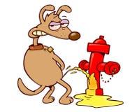 Wütender Hund, der auf einem Feuerhydranten pinkelt Stockbilder