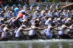 Wąż łódkowata drużyna Fotografia Royalty Free