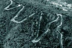 Wąż asfalt Zdjęcie Royalty Free