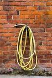 Wąż elastyczny i klepnięcie Obrazy Stock