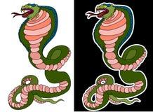 Wąż kobra odizolowywa na białym tle fotografia royalty free