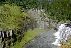 Wąż rzeka Zdjęcia Stock