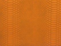 Wąż skóry pomarańczowy kolor Zdjęcie Stock