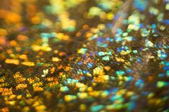 Wąż skóry tekstury plamy bokeh abstrakta tło obraz royalty free