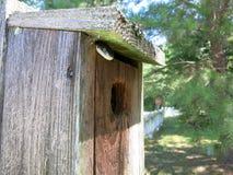 Wąż w Birdhouse 1 Fotografia Royalty Free