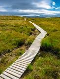 Wąska ścieżka w górę wzgórza w kierunku chmurnego nieba Zdjęcia Stock