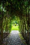 Wąska ścieżka w kierunku nasłonecznionej łąki Zdjęcie Royalty Free