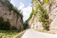Wąska motorowa droga wzdłuż halnej rzeki w wąwozie Rhodope góry Zdjęcie Royalty Free