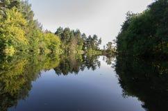 Wąska rzeka w lasowym Rzecznym Vorskla, Ukraina obraz stock