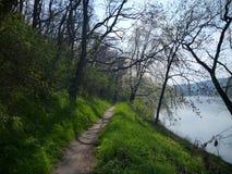 Wąski ślad wzdłuż rzeki Obraz Royalty Free