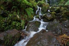 Wąski biały strumień woda płynie między mokrymi kamieniami Obraz Stock
