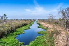 Wąski strumień woda w zatoka brzeg, Alabama obrazy royalty free