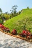 Wąski widok zieleń ogród i droga przemian, Chennai, India, Kwiecień 01 2017 Obraz Stock
