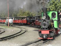 Wąskiego wymiernika kontrpary kolei pociąg Zdjęcie Stock