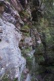 Wąwóz ściana, Hocking wzgórzy stanu las zdjęcia royalty free