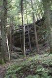 Wąwóz ściana w lesie zdjęcia royalty free