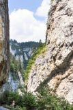 Wąwóz Rhodope góry, Bułgaria Zdjęcie Stock