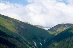 Wąwóz w górach zalesionych z rozpadliną, śnieżną cisza i wybrzeże fotografia stock