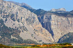 Wąwozów brzęczenia w północno-wschodni Crete, Grecja Zdjęcia Stock