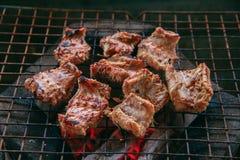 Węża mięso na grillu Fotografia Royalty Free