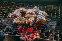 Węża mięso na grillu Obrazy Royalty Free