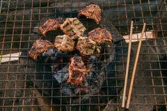 Węża mięso na grillu Fotografia Stock