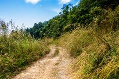 Wężowata droga Zdjęcie Royalty Free