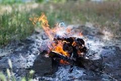 Węgiel drzewny i ogień Fotografia Royalty Free