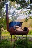 Węgiel drzewny i ogień Obrazy Royalty Free