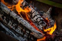 Węgiel drzewny i ogień Obraz Royalty Free