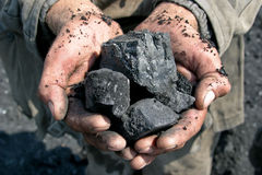 Węglowy górnik w rękach Zdjęcie Stock