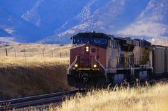 Węglowy pociąg Zdjęcie Stock