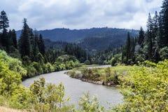 Węgorzowa rzeka biegająca Zdjęcia Stock