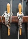węzły Zdjęcie Royalty Free