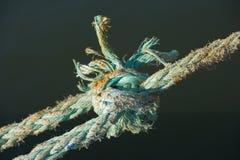 węzły podłączeniowa liny Fotografia Stock