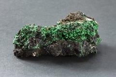 Włókienny malachit z świetnymi ostrze zieleni kryształami od Katanga Zaire obraz stock