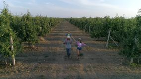 Właściciele ogród z dzieckiem na ramionach zabawę w jabłko ogródzie w lecie zbiory