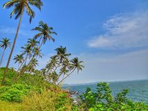 Właśnie tropikalni klimaty fotografia stock