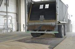 Właśnie zbierająca kukurudza wśrodku przyczepy Groszkuje polanego od przyczepy w silos dla przetwarzać Fotografia Stock