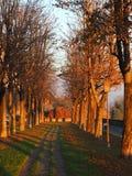 Włoch bergamo Stary miasto Jeden piękny miasto w Włochy Wykładająca aleja wzdłuż Weneckich ścian obrazy royalty free