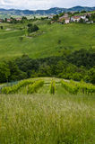 Włochy - idylliczny widok od wzgórza obrazy stock