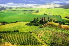 włochy kształtuje obszar Toskanii Zdjęcia Stock