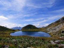 Włochy, Lombardy, Foppolo, Orobie Alps pstrągowy staw obrazy stock