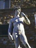 Włochy, Tuscany, Florencja, kopia David Michelangelo zdjęcia stock