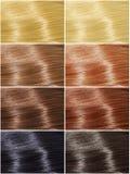 Włosów kolory ustawiający, odcienie obraz royalty free