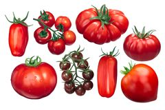 Włoscy pomidory, różne rozmaitość, ścieżki Zdjęcie Royalty Free