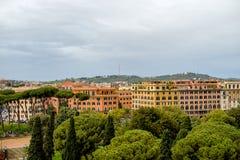 Włoska Kamienna sosna - krajobraz, Rzym Włochy zdjęcie stock
