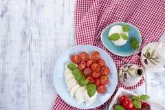 Włoska sałatka z caprese Sałatka świezi warzywa i ser ceramiczny tableware Uwalnia przestrzeń dla teksta Ręcznik w czerwonej klat obraz stock